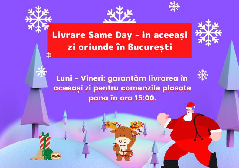 Livrare SameDay in Bucuresti